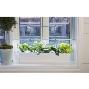 Plantelys LED